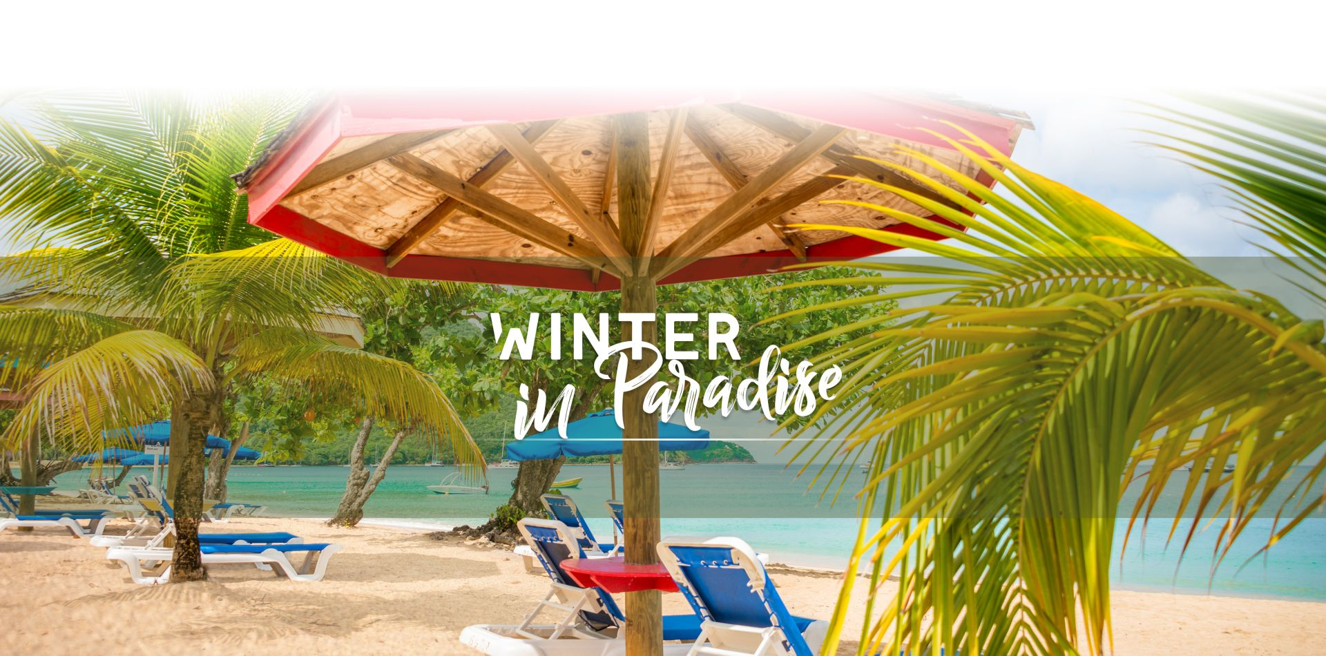 Paradise Package   St. Lucia Deals   Bay Gardens Resort