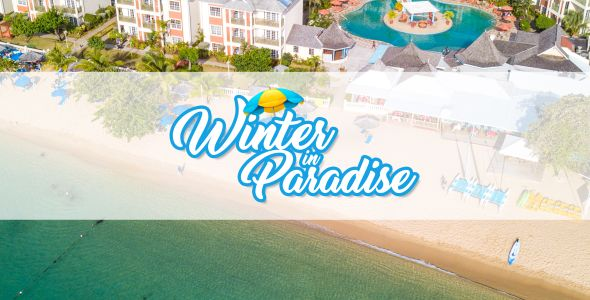 Winter in Paradise Sale